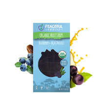 Load image into Gallery viewer, Blueberry + Acai Drizzle Organic Fruit Strips