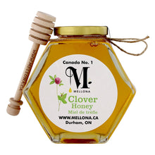 Load image into Gallery viewer, Hex Honey Jar With Dipper - Local Ontario Clover Honey - 580g