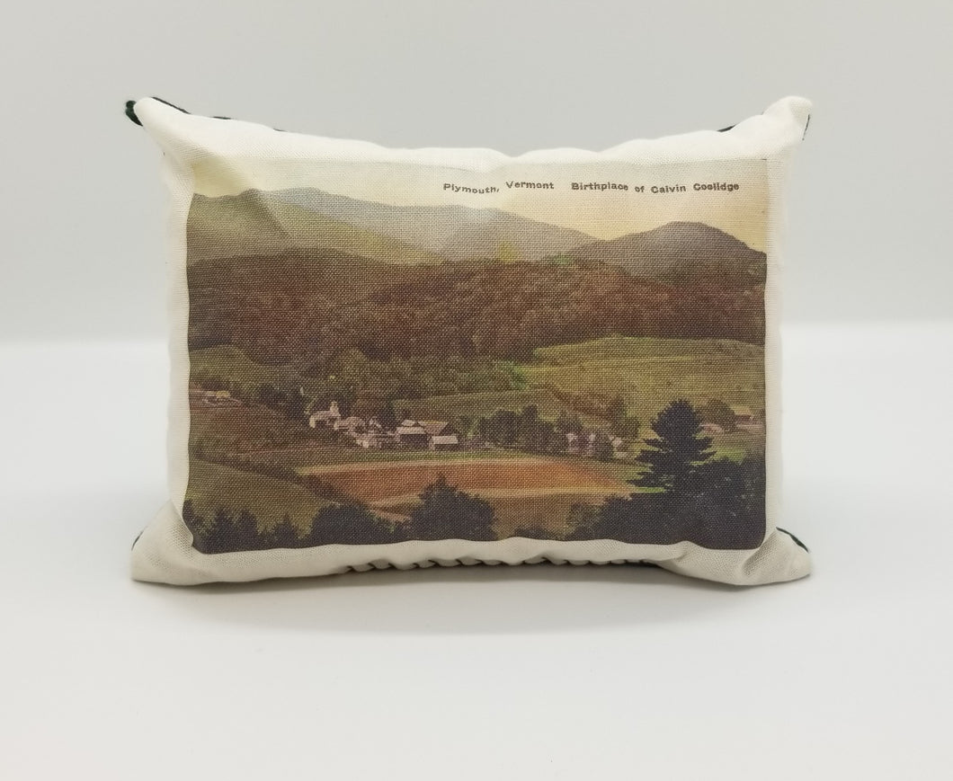 Balsam Fir Needle Bag Plymouth Notch
