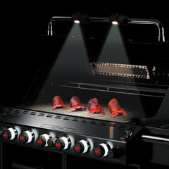 Weber Summit S-670 Freestanding Propane Gas Grill With Rotisserie, Sear Burner & Side Burner
