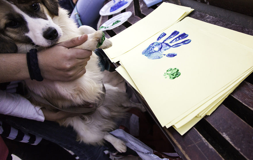 paw print on paper of a dog