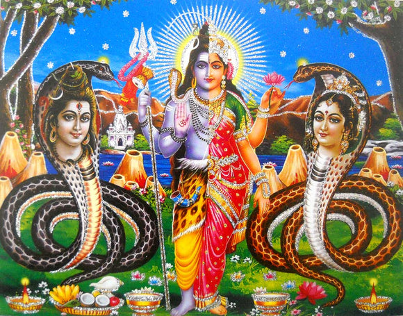 Lord Shiva as Ardhnarishvara poster/ Hindu God Poster with Glitter -reprint on paper (Unframed : Size 9