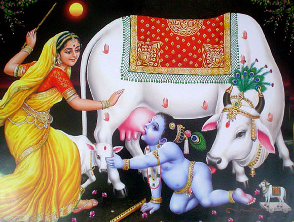 Naughty bal krishna poster-reprint on paper-(20x16 inches)
