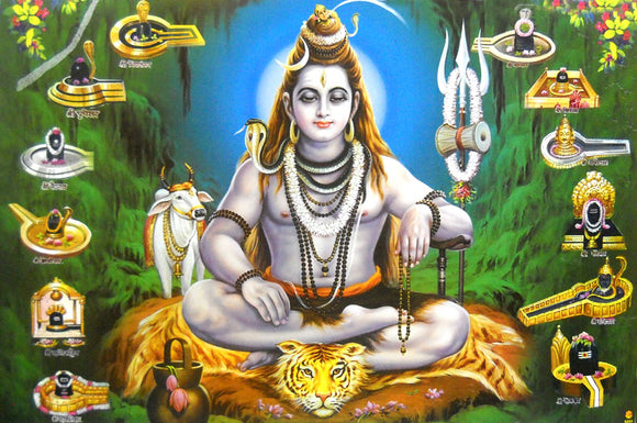 Twelve Jyotirlinga of Lord Shiva/ Hindu God Big Poster -reprint on paper (Unframed : Size 21
