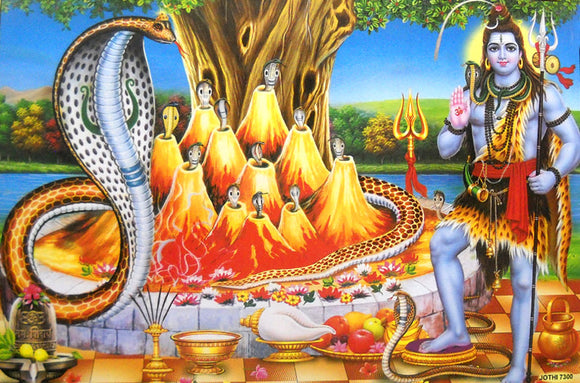 Lord Shiva with Snakes/ Hindu God Big Poster -reprint on paper (Unframed : Size 21