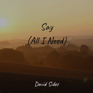 Say (All I Need) (OneRepublic)