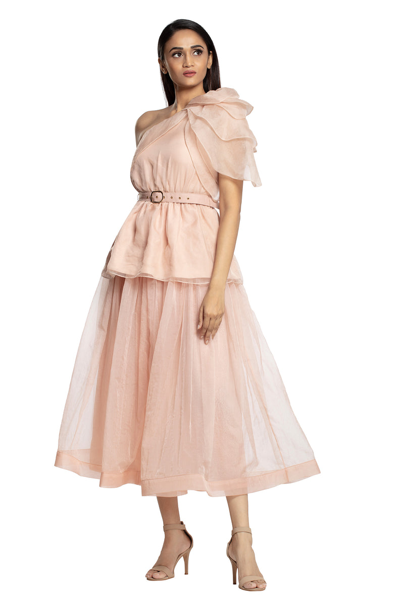 Blush pink one shoulder ruffled top