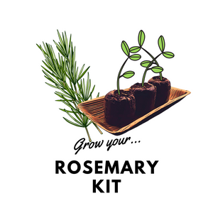 Grow Your Rosemary: Organic Kit