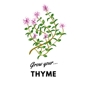 Grow Your Thyme: Organic Seeds