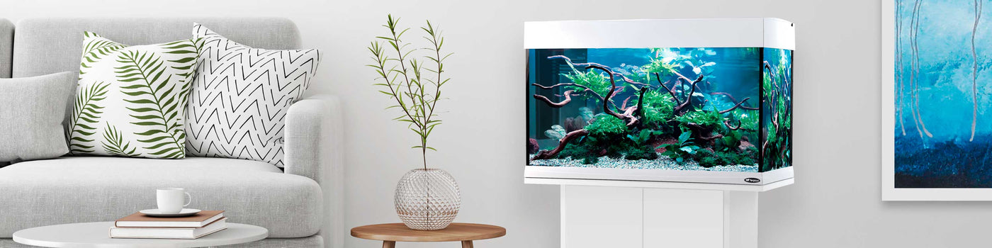 AQUARIUMS, FISH TANKS AND STANDS