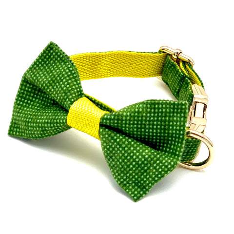 Green & Yellow Polka Dog Collar & Dog Bow Tie Set