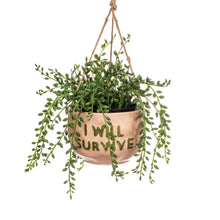 Load image into Gallery viewer, I Will Survive Hanging Planter