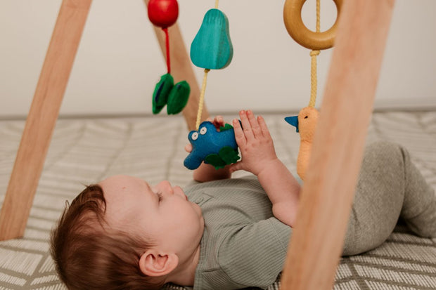 Baby Gym for Hanging Mobiles