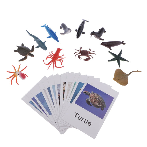 Montessori Matching Ocean Cards and Figurines