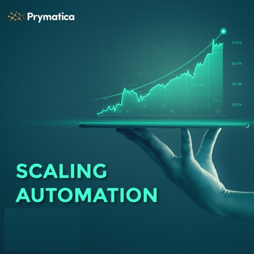 Prymatica Executive Business Scaling Service
