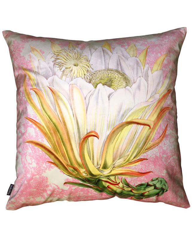 Velvet Cushion Protea Pink Toile 50x50
