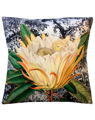 Velvet Cushion Yellow Protea 50x50