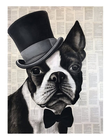 Mr. Top Hat Frenchie