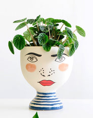 Audrey Planter