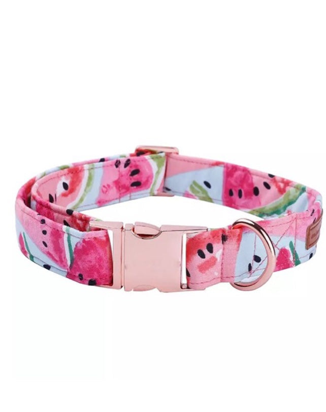 Hannah Dog Collar 100% Cotton