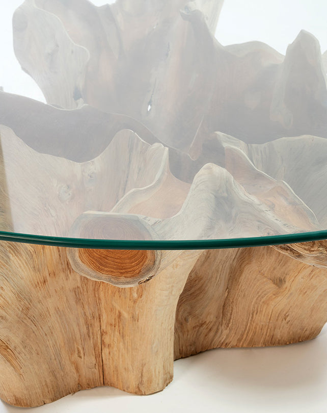 Teak Root Coffee Table w/Glass