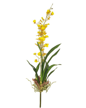 Dancing Oncidium Plant Yellow 78cm