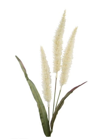 Fountain Grass Cream 94cm