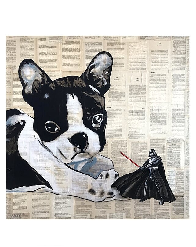 Darth Vader vs The Frenchie