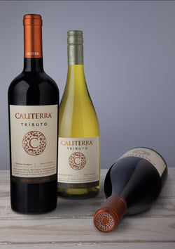 Caliterra tributo pack 3 wines