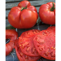 Homegrown Beef Steak Tomato Seeds, Indeterminate & Conventionally Grown , Bakers Dozen