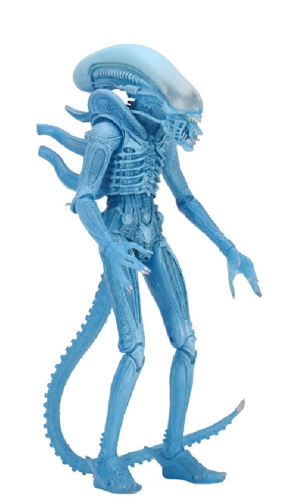 Kenner Warrior Aliens Series 11 Action Figure