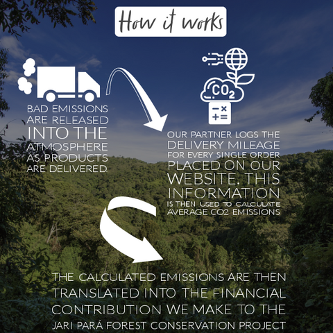 Carbon offset and how it works