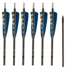 Load image into Gallery viewer, Classic Traditional Arrows - Dozen - Blue