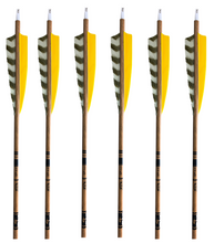 Load image into Gallery viewer, Gold Tip Traditional Carbon Arrows -  6 Pack - Yellow
