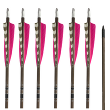 Load image into Gallery viewer, Classic Traditional Arrows - Dozen - Pink