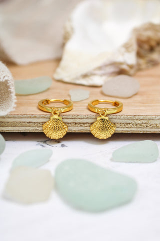 GOLD SHELL HOOPS