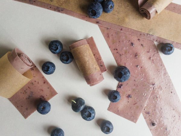 Blueberry Yogurt Roll Ups