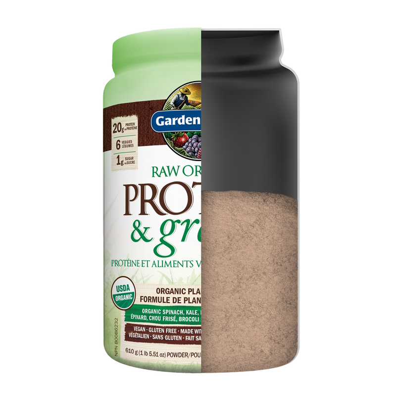 Raw Organic PROTEIN & Greens - Chocolate