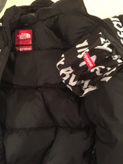 "Supreme / TNF ""by any means necessary"" Nuptse DSWT"