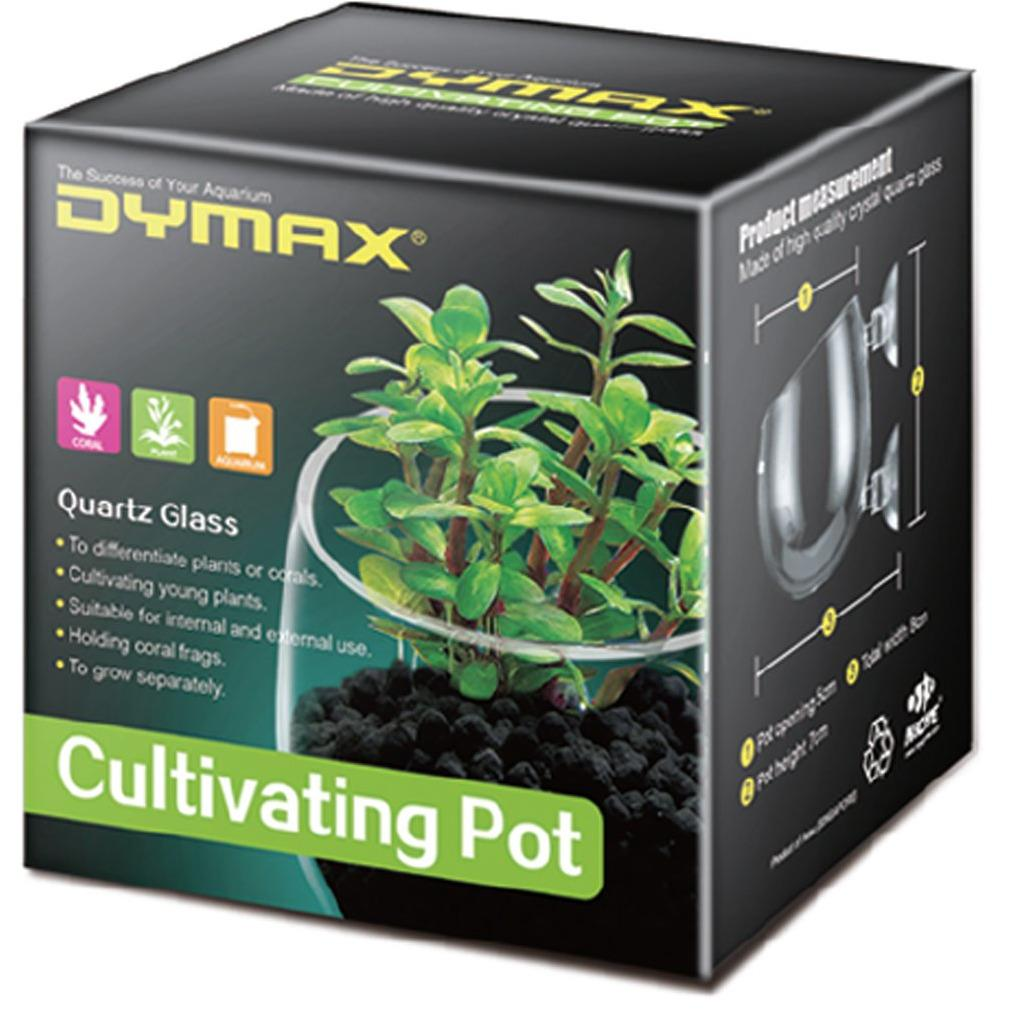 Dymax Crystal Cultivating Pot