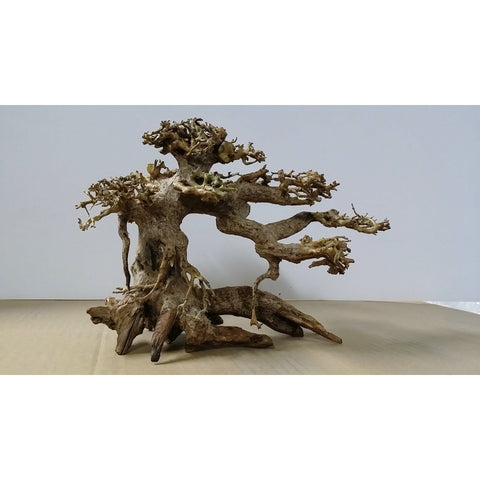 """NEW Product"" Bonsai aquarium wood decoration"