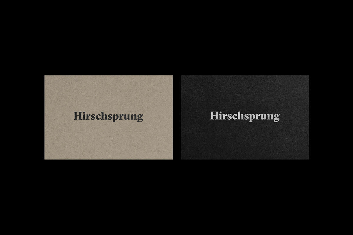 Daniel Siim: The Hirschsprung Collection