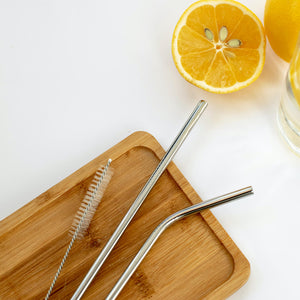 Eco-friendly Reusable Steel straws with Cleaning Brush