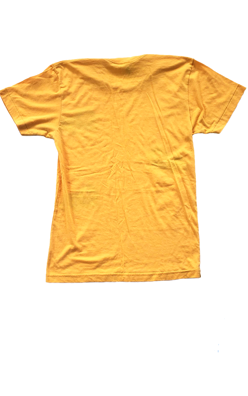 American Apparel Lion Tee