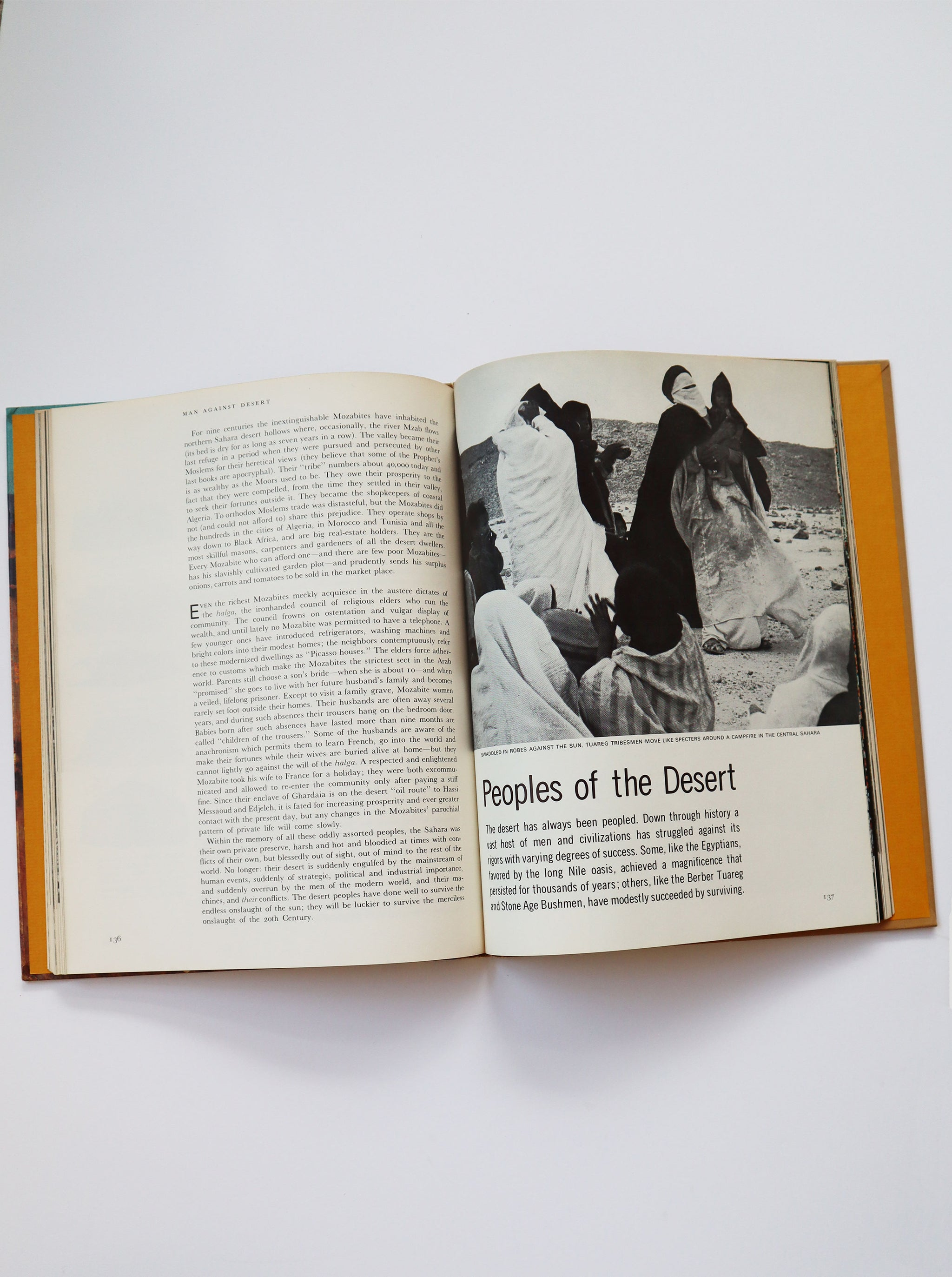 Vintage Life Nature Library's The Desert (copyright 1961, 1962)