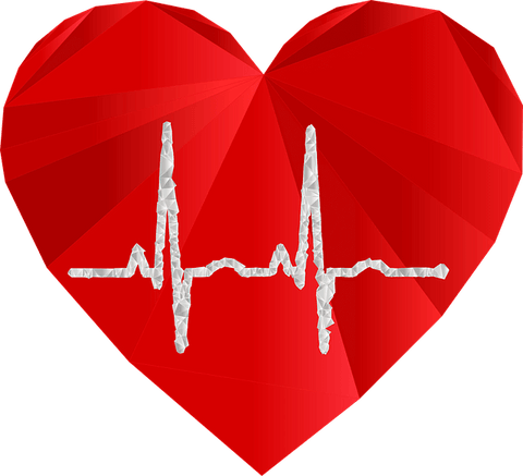A red heart with an ECG running through it as part of the self care blog.
