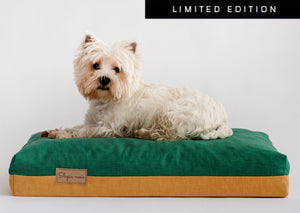 Limited edition dog bed with a dog laying on a bed