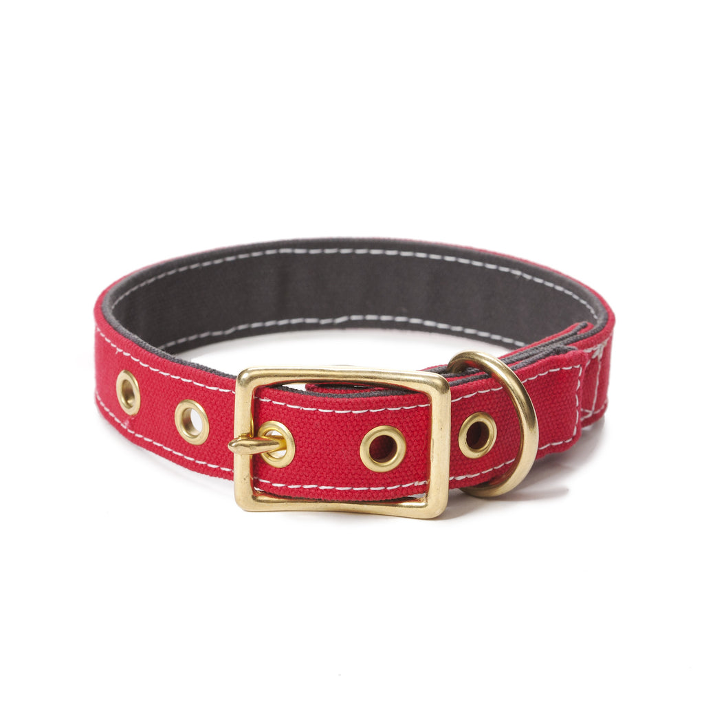 Canvas Collar in Red/Grey