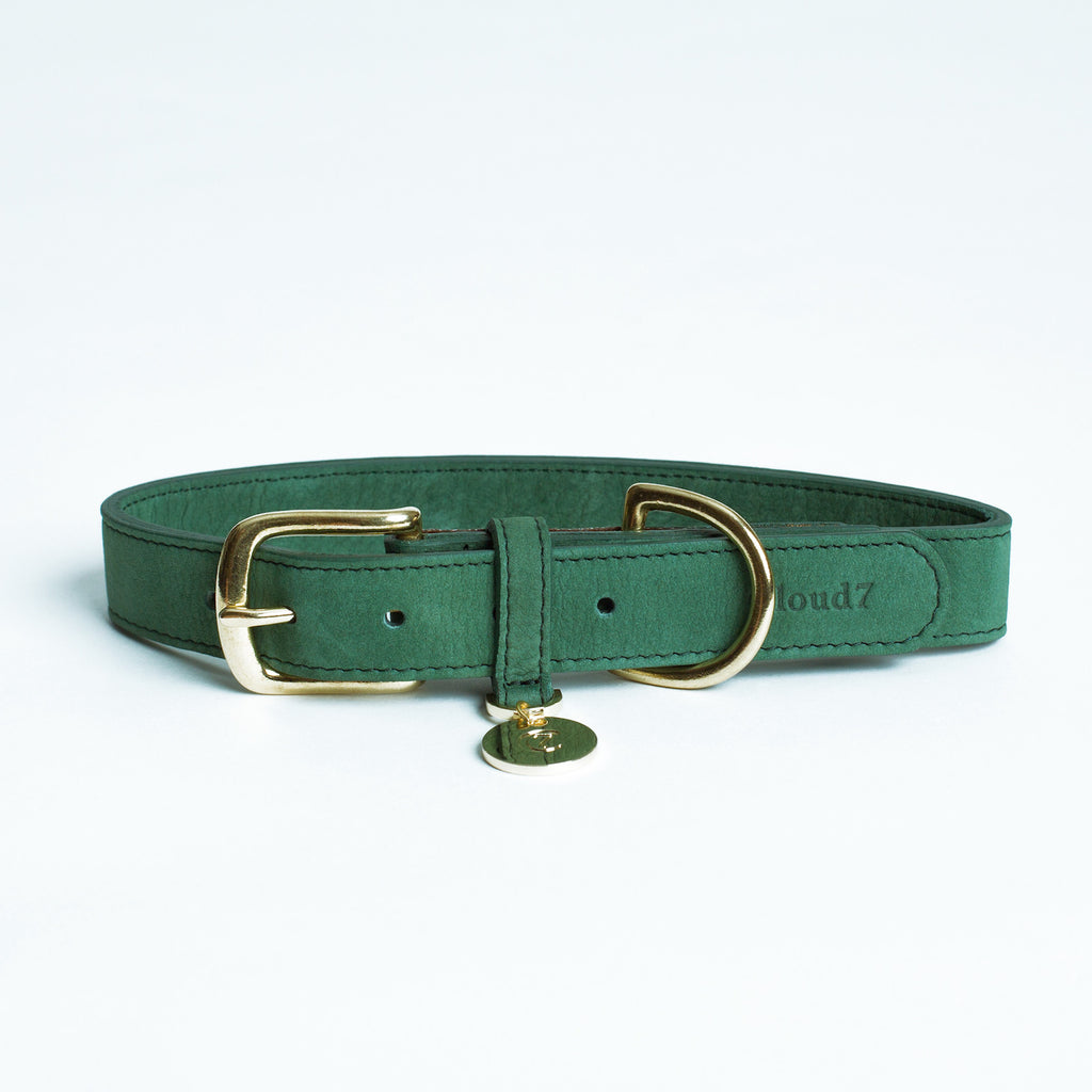 Nubuck Collar in Green from Cloud 7