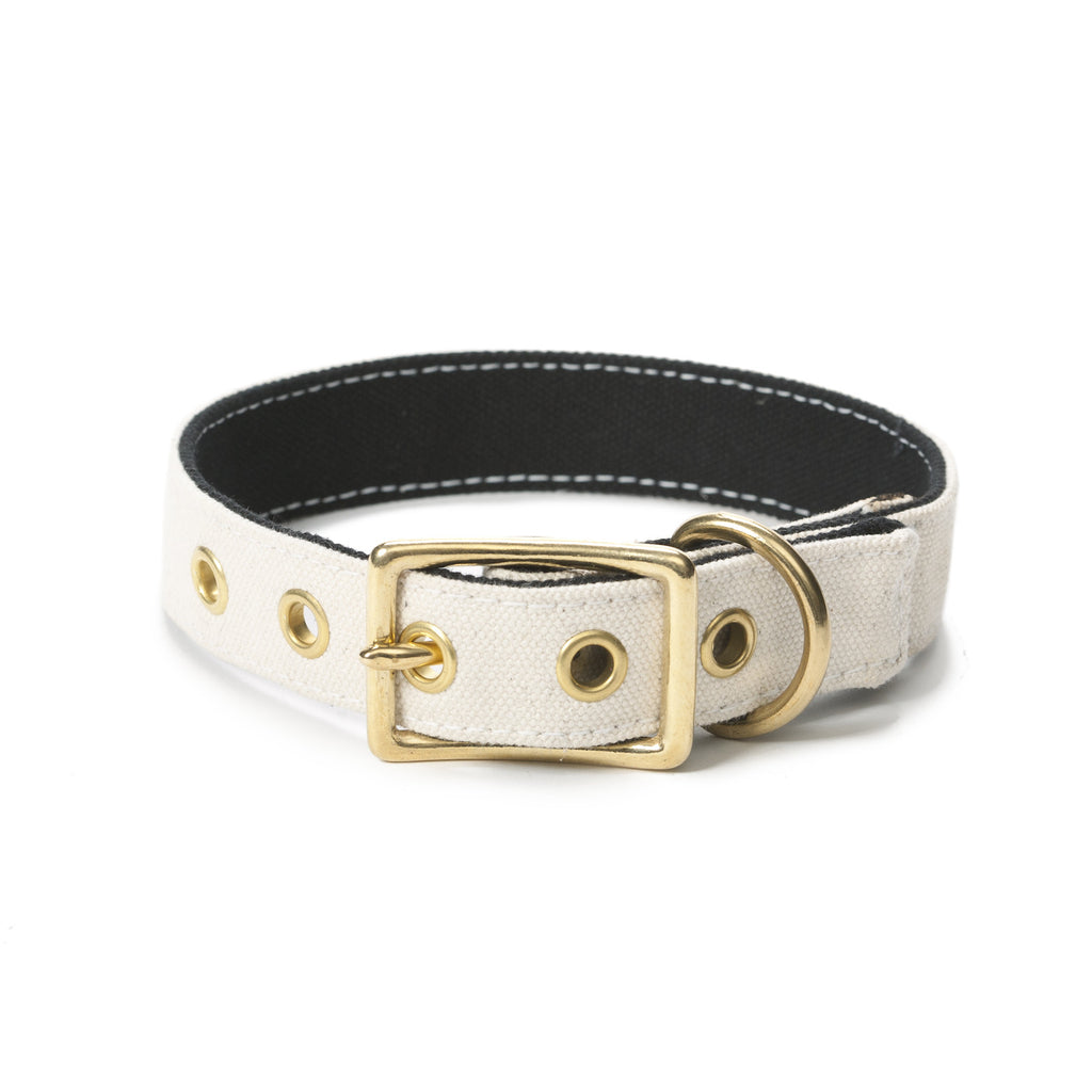 Canvas Collar White/Black